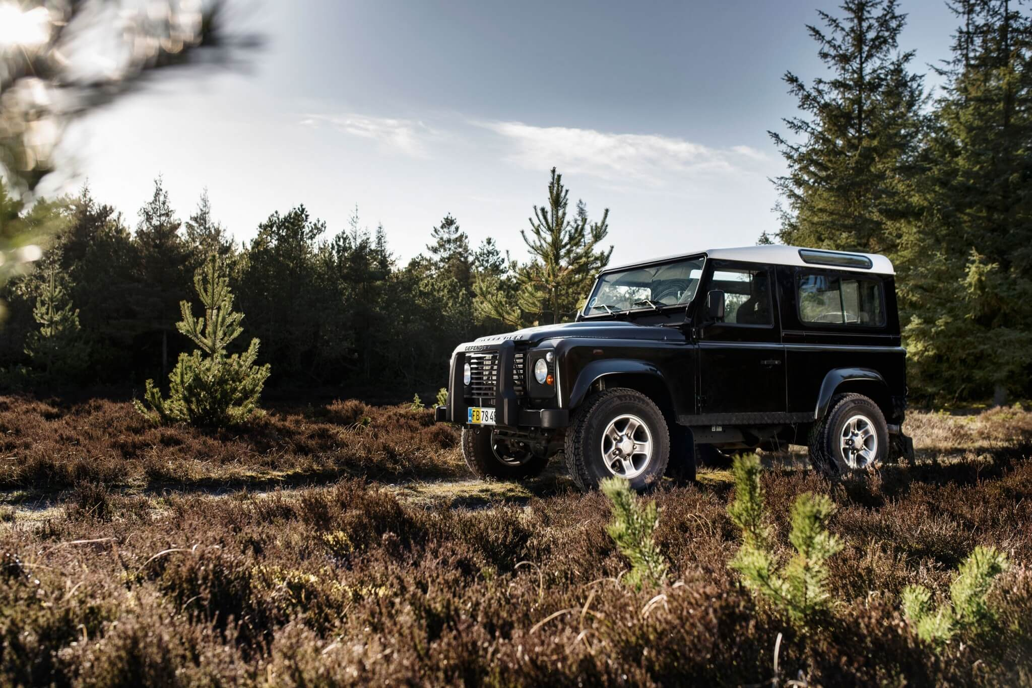 Land Rover Defender forest