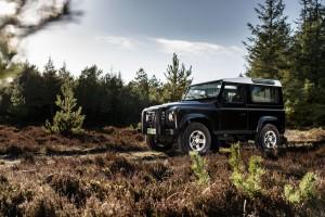 Land Rover Defender forest